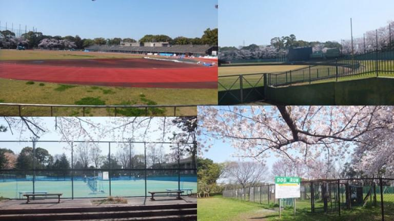 陸上競技場、野球場、テニスコート、ドッグラン - 青葉の森公